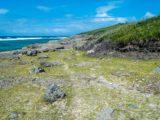 Rodrigues isola: dove si trova, cosa vedere e quando conviene andarci