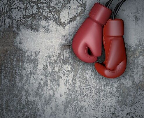 Felice Herrig: biografia e vittorie della lottatrice di arti marziali e kickboxing